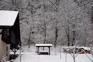 Big_iarna