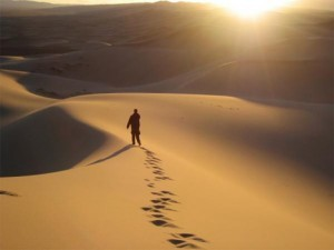 Big_alone-in-the-desert