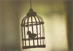 Big_cage