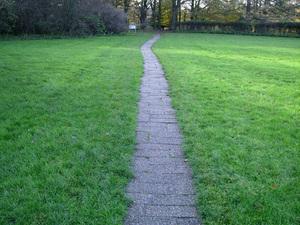 Big_paths2