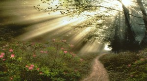 Big_path