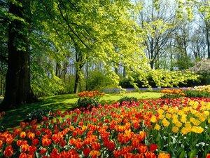 Big_garden